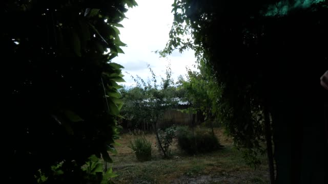 ITA: A Rainy Day In The Wild Abruzzo Countryside