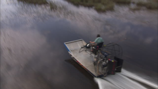 an air boat cruises across the everglades. - everglades national park stock videos & royalty-free footage