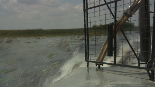 an air boat cruises through the everglades. - everglades national park stock videos & royalty-free footage