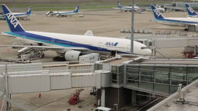 vídeos de stock, filmes e b-roll de an aircraft operated by all nippon airways co. stands parked at haneda airport in tokyo, japan, on wednesday, sept. 11 long shot a skymark airlines... - boeing 787