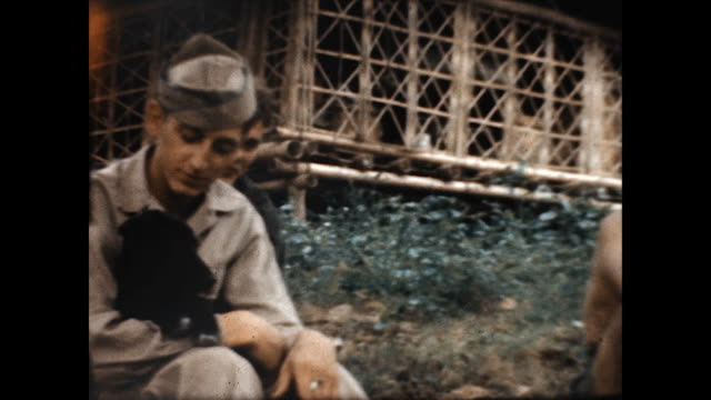 vidéos et rushes de an american gi cuddles his puppy at clark air field at the end of wwii. - jeune animal