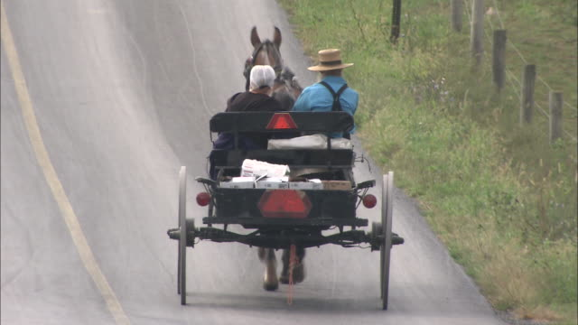vídeos de stock e filmes b-roll de an amish couple rides in a horse-drawn buggy. - amish