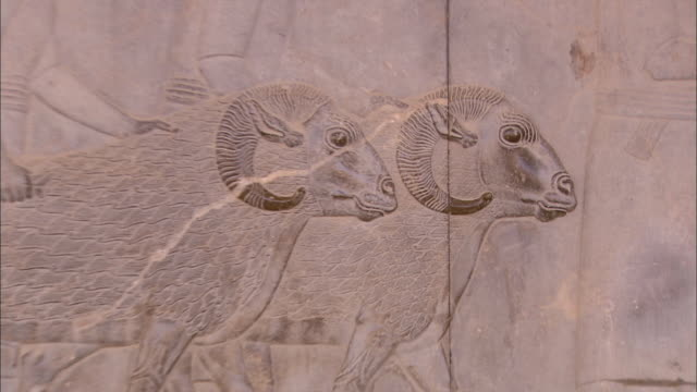 an ancient persian bas-relief shows men leading rams. - bas relief stock videos & royalty-free footage