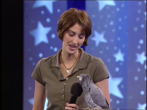 an animal trainer holds a microphone for a gray parrot. - televisione a ultra alta definizione video stock e b–roll