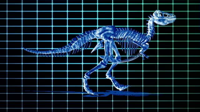 an animated t-rex skeleton walks against a glowing blue grid. - extinct stock videos and b-roll footage