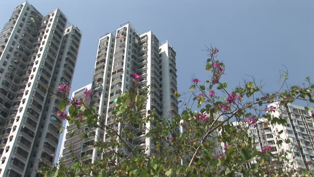 an apartment in hong kong china - fensterfront stock-videos und b-roll-filmmaterial