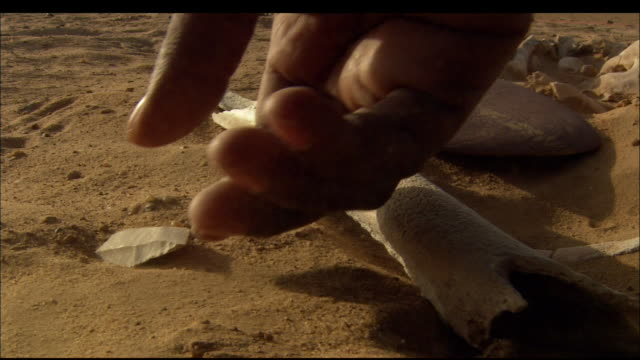an archaeologist pulls an artefact from the sand at an archaeological dig. available in hd. - archaeology stock videos & royalty-free footage