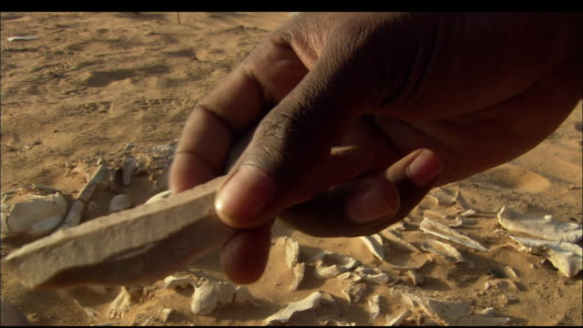 An archeologist handles an artifact at an archaeological dig. Available in HD.
