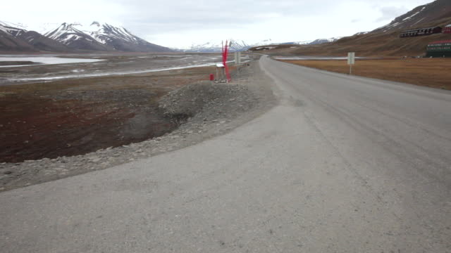 An area of nesting arctic terns at Arctic Bay, not far from Longyearbyen, Spitsbergen; the red sticks are for protection from the attacking birds, which protect their nests during the nesting period; beautiful mountainous scenery in the back