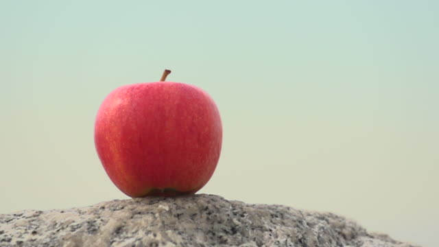 vídeos de stock, filmes e b-roll de an arrow hitting an apple. - slow motion - filmed at 480 fps - flecha