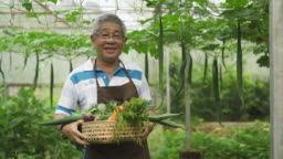 an asian chinese active senior man farmer in greenhouse looking at camera happily