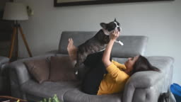 an asian chinese beautiful woman pet owner bonding time with her pet french bulldog on sofa pretend flying