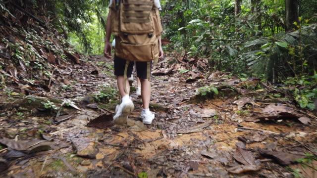未舗装道路の歩道をたどって週末に熱帯雨林を歩いたりハイキングしたりする2人の子供のアジアの中国人家族 - footpath点の映像素材/bロール