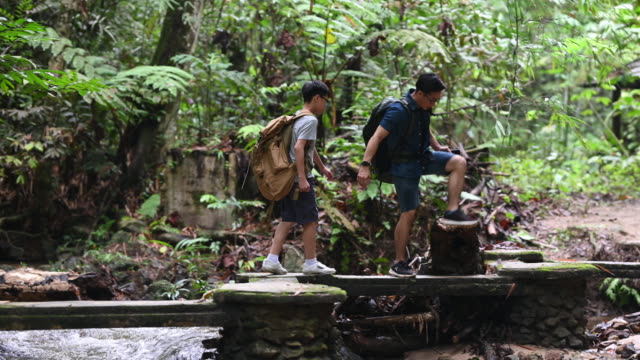 an asian chinese father hiking and exploring forest with his son looking at mobile app on map for direction navigation - eco tourism stock videos & royalty-free footage