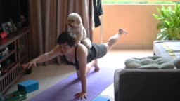 an asian chinese mid adult practicing yoga exercising at home while her toy poodle pet dog disturbing her and licking her face
