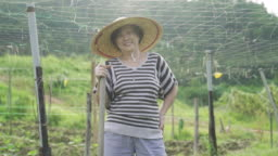 An asian chinese senior adult working in the farm for their retirement time spend at her back yard of her house