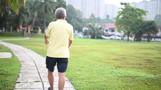 アジアの中国人の先輩男性が近所の公共公園でトレーニングをする - 準備運動点の映像素材/bロール