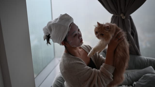 an asian chinese teenager girl  doing face spa mask with her cat in bedroom - detox stock videos & royalty-free footage