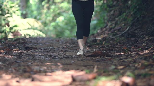 vidéos et rushes de jambes d'une femme chinoise asiatique marchant dans la forêt tropicale de la jungle sentier de randonnée - membres du corps humain