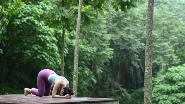 an asian chinese yoga instructor doing a head stand poses in the forest on a wooden platform - upside down stock videos & royalty-free footage