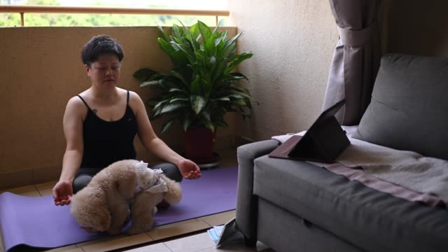 an asian mid adult woman workout yoga at home balcony during the restricted movement order in malaysia with her toy poodle pet animal - relaxation exercise stock videos & royalty-free footage