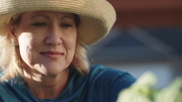 vídeos y material grabado en eventos de stock de una mujer caucásica atractiva en cincuenta años lugares vegetales en una cesta como ella tiende a su jardín al lado de su casa en un día claro y soleado - jardinería