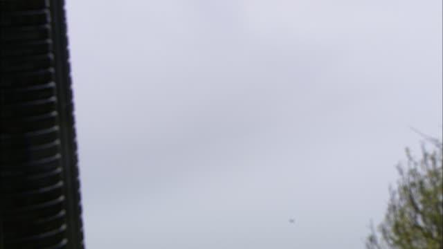 an automatic skeet thrower releases clay pigeons into an overcast sky. - tontaubenschießen stock-videos und b-roll-filmmaterial