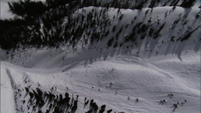 an avalanche rolls down a mountainside. - british columbia stock videos & royalty-free footage