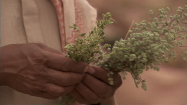 an egyptian man dressed in traditional clothing separates out one sprig of herbs from a bunch and shakes the sprig in the air while talking. - tradition stock videos & royalty-free footage
