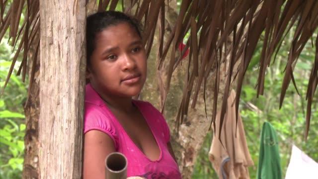 An einem Seitenfluss des Amazonas soll in Brasilien der drittgrobte Staudamm der Welt gebaut werden Altamira Brazil
