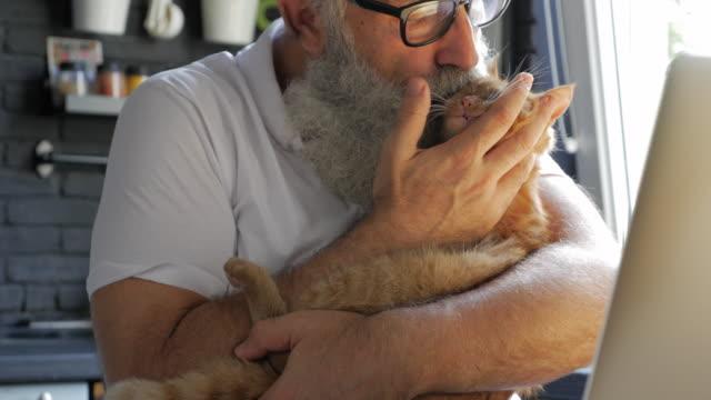 vídeos de stock, filmes e b-roll de um homem barbudo idoso acariciando e beijando um gato na cozinha - animal de estimação