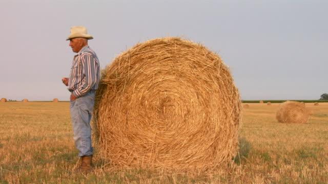 vidéos et rushes de an elderly cowboy leans against a hay roll. - dakota du nord