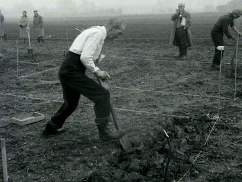 stockvideo's en b-roll-footage met an elderly man digs up a plot of land during a digging competition - spelkandidaat