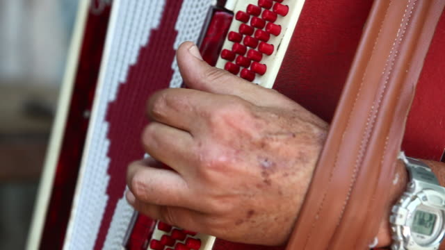 vídeos y material grabado en eventos de stock de an elderly man plays on an accordion. - acordeonista