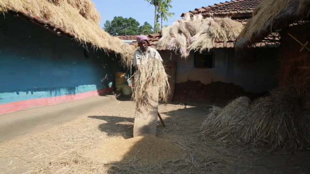 WS of an elderly man who is threshing straw on a wooden bench in a backyard with several shacks in the background in a rural area about 300 Kilometer...