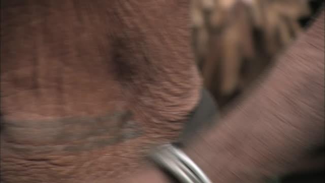 an elderly woman bears a tattoo on her torso. - 臍点の映像素材/bロール