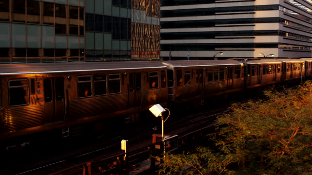 An elevated train moves along tracks at sunset.