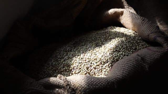 An employee monitors coriander being processed at a Suhana spice factory in Pune Maharashtra India on Monday Nov 28 Sacks of unprocessed coriander...