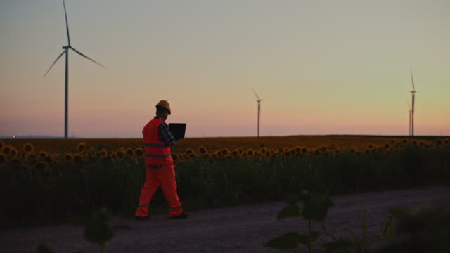 an engineer works on a laptop and adjusts the wind turbines as he walks through a field of windmills, at sunset. - alternative energy stock videos & royalty-free footage