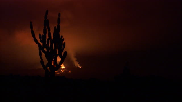 an erupting volcano spews smoke into the night sky beyond a silhouetted cactus. available in hd. - cactus silhouette stock videos & royalty-free footage