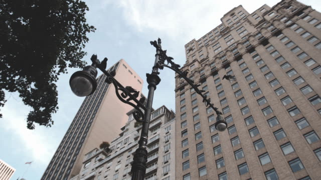 an establishing shot of pigeons perched on a new york city lamp post. - bロール点の映像素材/bロール