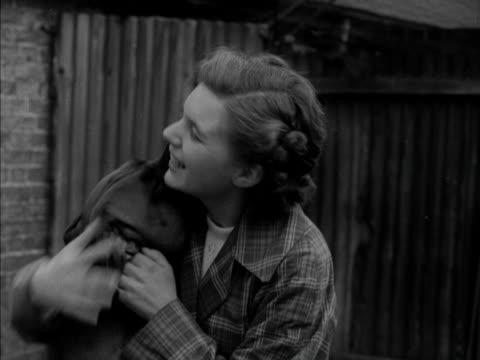 an excited boxer dog licks his owners face 1951 - boxer dog stock videos and b-roll footage