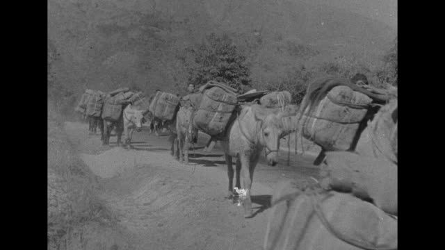 an expansive, aerial view of the burma road / natives and full burlap sacks / vs laden mules crossing a rickety bridge; a long line of them walking... - 起爆装置点の映像素材/bロール