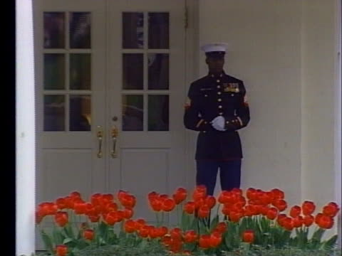 an honor guard stands at a white house entrance. - oklahoma city bombing stock videos & royalty-free footage