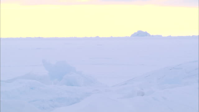 an iceberg on the snow-covered ground in the north pole - north pole stock videos & royalty-free footage