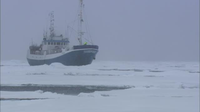 An icebreaker ships breaks through sea ice in Svalbard, Arctic Norway.