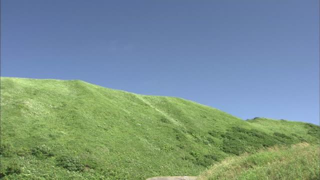 an idyllic scenery of hokkaido - 丘点の映像素材/bロール