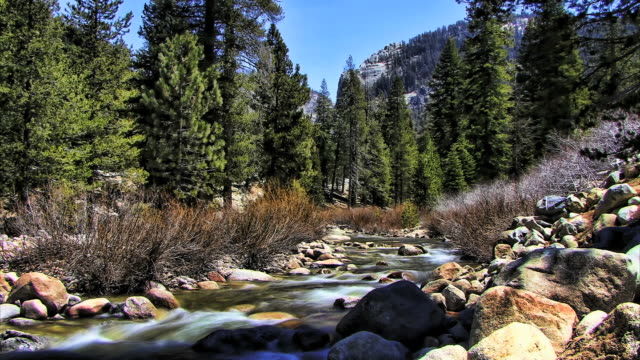 an idyllic stream calmly flows in a mountain setting. - digital enhancement stock videos and b-roll footage