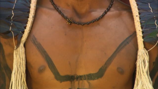 an indigenous man wears a headdress, body and face paint. - body paint stock videos & royalty-free footage