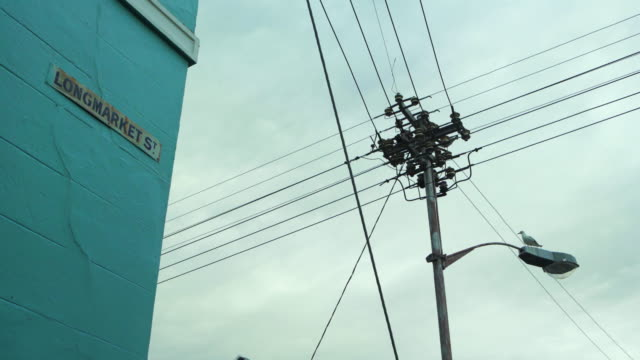 an interesting lockdown of pigeons fluttering around telephone pole and wires in front of a cloudy sky - cape town, south africa - pole stock videos & royalty-free footage